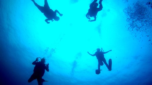 Diving as volunteer in Fiji